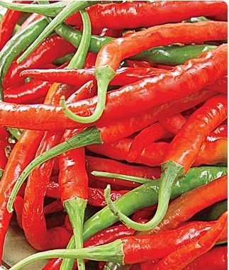 Long Red Slim Cayenne Hot Pepper