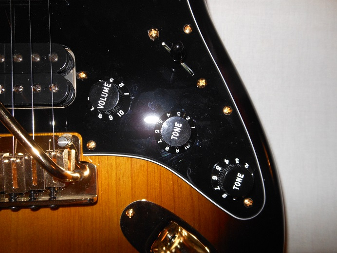 Mod Shop Stratocaster Picture 15
