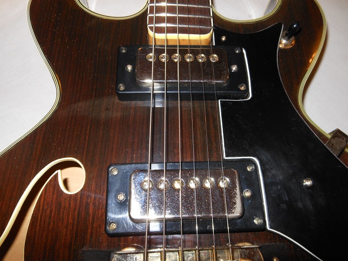 HollowBodyRosewood Picture 13