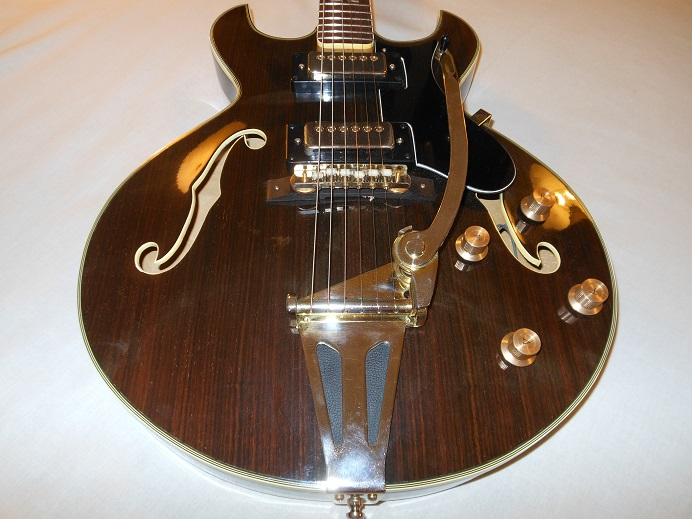 HollowBodyRosewood Picture 14