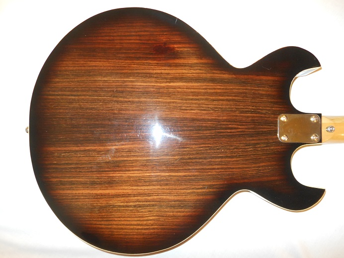 HollowBodyRosewood Picture 9